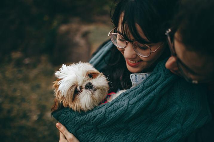 Top-Pet • Les sens du chien : le toucher